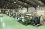 از تولید فرش تا اوج کارآفرینی