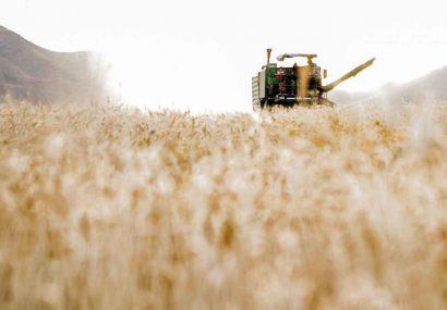 سهم بخش کشاورزی و صنایع غذایی در صادرات غیرنفتی