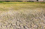 چارهجویی برای بحران برق و آب در بخش کشاورزی